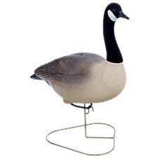 RedHead Full-Body Canada Goose Decoys - Standard Pack