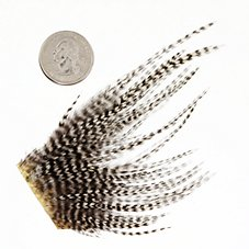 White River Fly Shop Dry Fly Hackle Mini Pack – Size 12 and 14