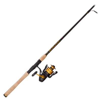Penn spinfisher v 3500 4500 spinning rod and reel combos for Bass pro fishing reels