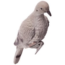 RedHead Rubber Dove Decoy - 4-Pack