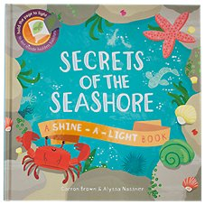Secrets of the Seashore Book for Kids By Carron Brown