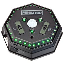 Moultrie Game Feeder Hog Light