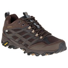 Merrell Moab FST Waterproof Hiking Shoes for Men
