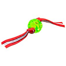 Hero Retriever Series Treat Ball with Streamers for Dogs