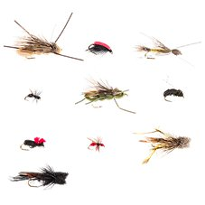 White River Fly Shop 10-Piece Classic Terrestrials Fly Assortment