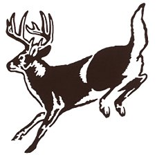 Bass Pro Shops Outdoor Action Decals - Deer Action