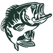 Bass Pro Shops Outdoor Action Decals - Bass