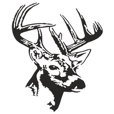 Bass Pro Shops Outdoor Action Decals - Deer Bust