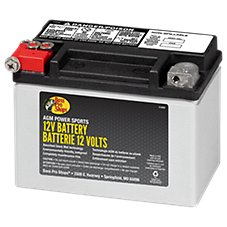 Bass Pro Shops XPS AGM Power Series 12-Volt ATV Battery