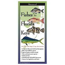 Fishes of the Florida Keys Laminated Folding Guide by Bob Shipp and Diane Peebles