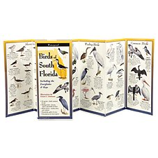 Birds of South Florida Laminated Folding Guide by Ernest Simmons