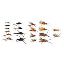 White River Fly Shop 20-Piece Stone Fly Life Cycle Assortment