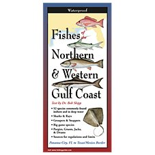 Fishes of the Northern & Western Gulf Coast Laminated Folding Guide by Bob Shipp and Diane Peebles