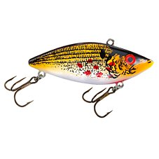 Wounded Shad
