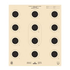 RedHead Official NRA Air Pistol/Air Rifle Targets