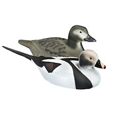 RedHead Floating Duck Decoys - Old Squaw