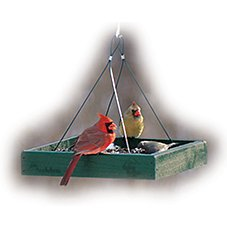 WoodLink Going Green Recycled Bird Feeder - Hanging Platform