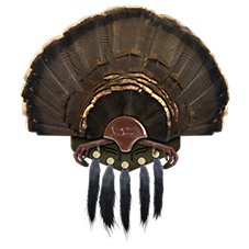 Mountain Mike's Reproductions Beard Collector Turkey Mount