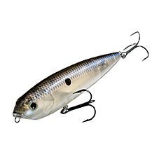 Blue Gizzard Shad
