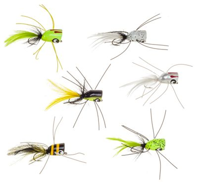 Bett's Bass Bug Popper Kit 6 Piece 1