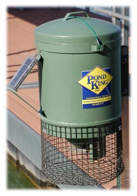 Pond King Mounted Fish Feeder Bass Pro Shops