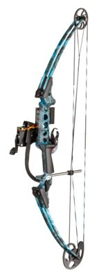 AMS Bowfishing Fish Hawk Compound Bowfishing Package by