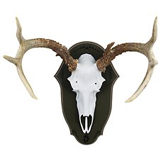 Mountain Mike's Black Forest Mounting Antler Plaque
