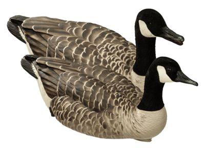 Avian-X Topflight Honker Floater Canada Goose Decoys
