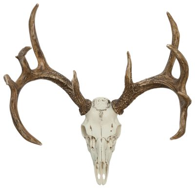 Cast Horn Designs Whitetail European Mount by