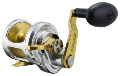 Accurate Fury Single-Speed Conventional Saltwater Reel - FX - 500GS