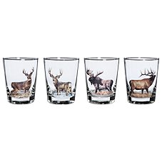 Wild Wings Big Game 4-Piece Double-Old-Fashioned Glass Set