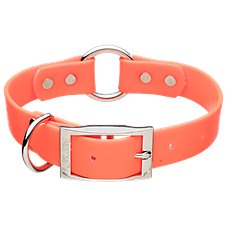 RedHead Double Ring Safety Dog Collar