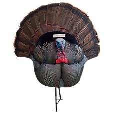 Montana Decoy Fanatic Tom 2D Turkey Decoy