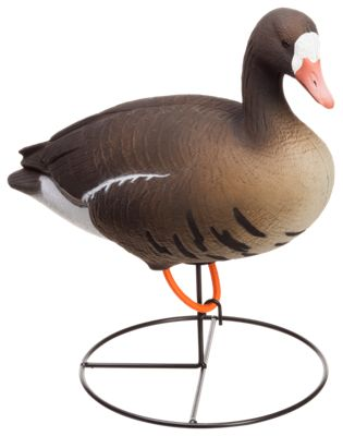 Tanglefree Pro Series Full Body Specklebelly Goose Decoy Combo Pack thumbnail