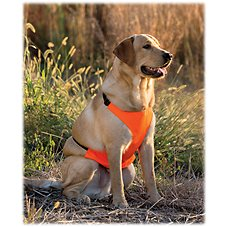 RedHead Chest Protector for Dogs