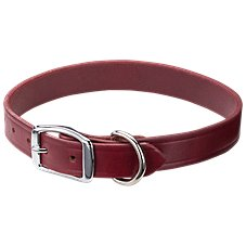 RedHead Latigo Leather Dog Collar