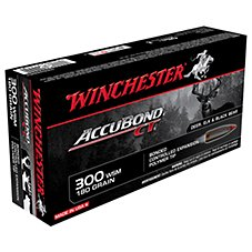 Winchester Supreme Accubond CT