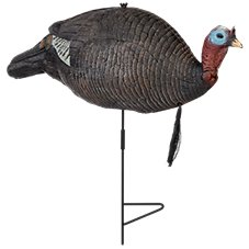 RedHead Foam Upright Jake Turkey Decoy