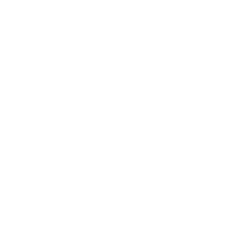 Bass Pro Shops Stripe Print Swim Shorts for Men