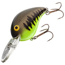 Chartreuse Baby Bass