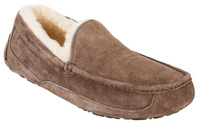 0466dae28dd UGG Ascot Suede Slippers for Men Espresso 13M