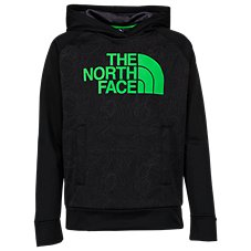The North Face Surgent Half Dome Logo Pullover Hoodie for Boys