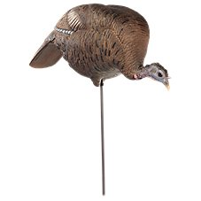 Dave Smith Decoys Feeding Hen Turkey Decoy