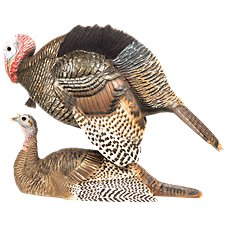 Dave Smith Decoys Mating Motion Pair Turkey Decoy Set