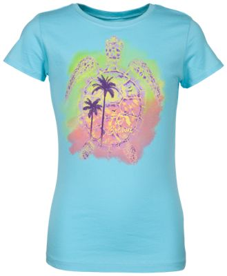 54dcd226dc3 FloGrown Painted Turtle T Shirt for Kids Teal M