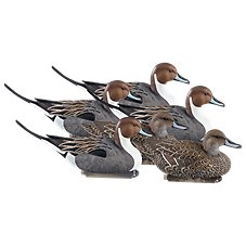 Cabela's Northern Flight F.L.D. Pintail Duck Decoys