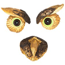 Land & Sea Owl Tree Face