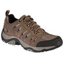 Ascend Lisco Low Waterproof Hiking Shoes for Men Image