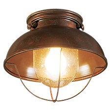 White River Fisherman's Ceiling Light Image