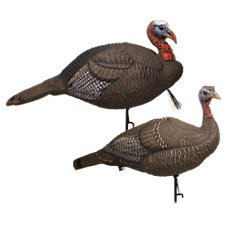 Lucky Duck HD Collapsible Jake/Hen Turkey Decoy Combo